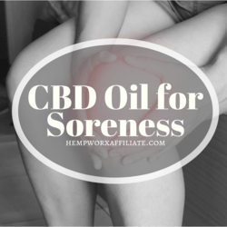 CBD Oil for Soreness